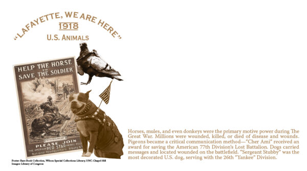 US Animals